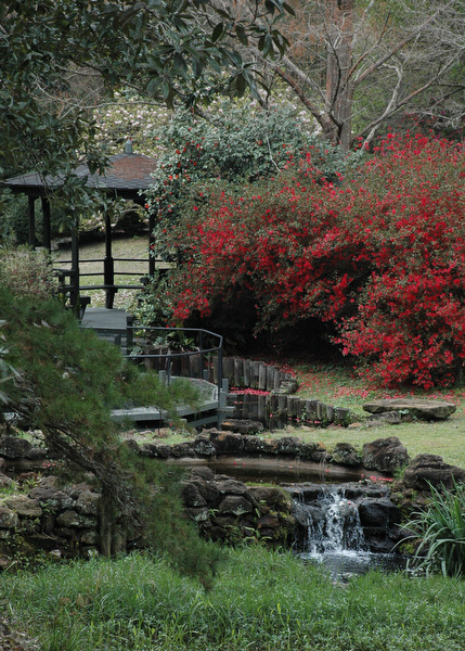 Asian american garden bellingrath gardens home for American garden company