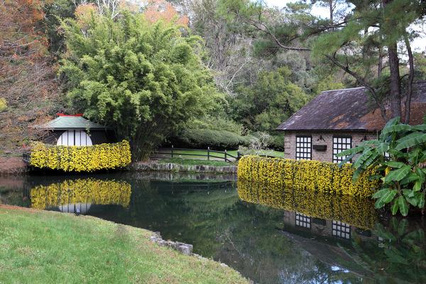 Asian-American Garden – Bellingrath Gardens & Home