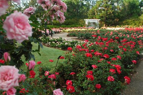 The Bellingrath Rose Garden Bellingrath Gardens Home