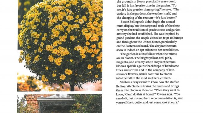 Country Gardens Pg7