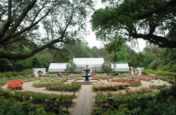 Rose Bloom Out Bellingrath Gardens Home