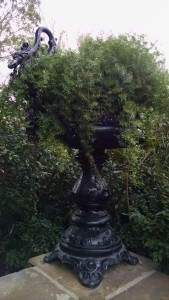 The urns on the North Terrace were purchased from Harry and Elizabeth Holden of New Orleans.