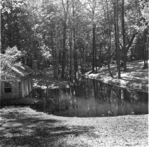 The Bellingraths' Delco system was housed in a small building in what is now the Asian American Garden.