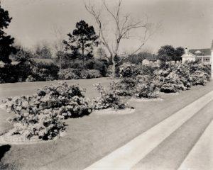 Bessie Bellingrath's Ann Street garden.