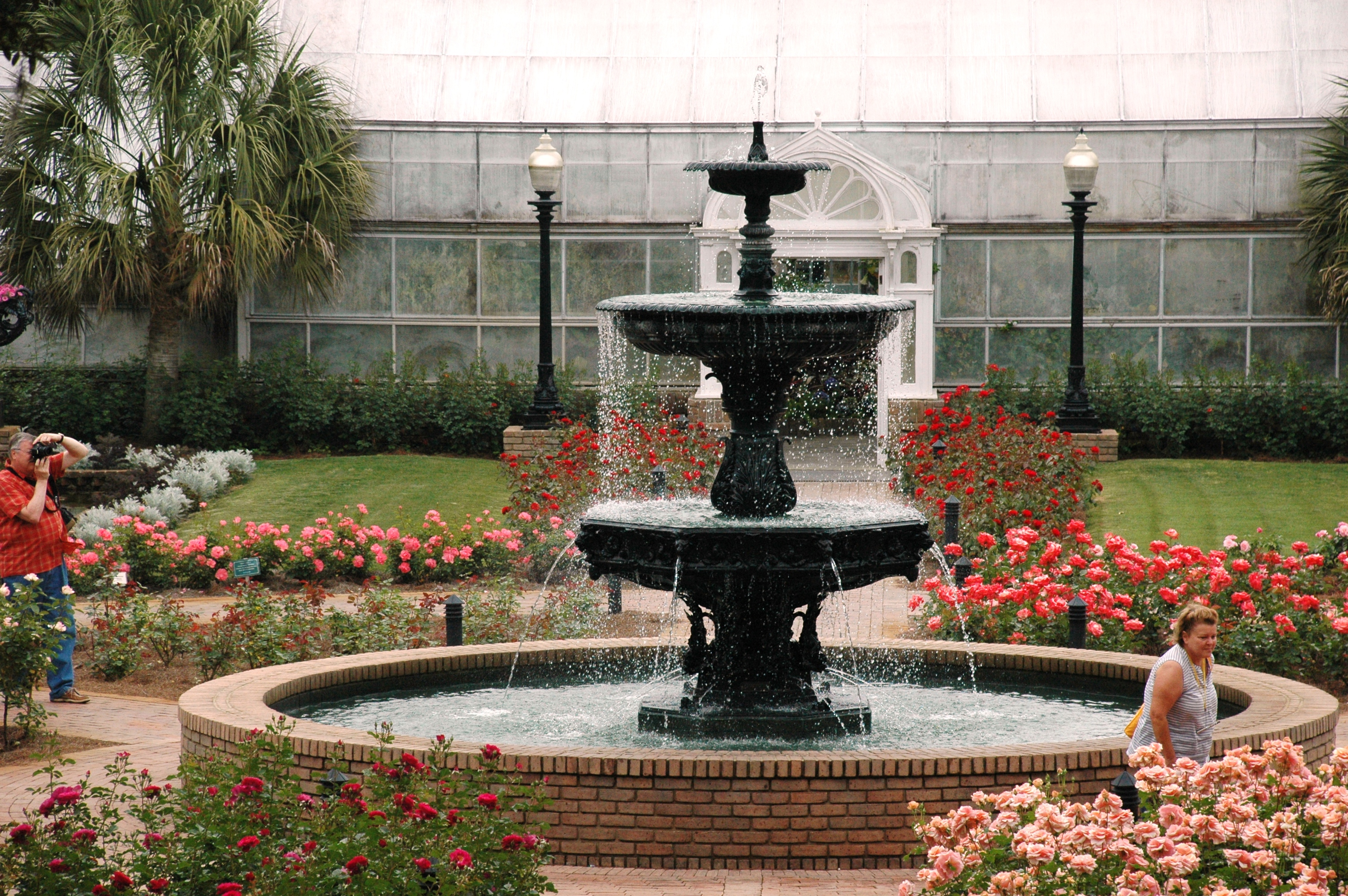 Roses At Bellingrath Lots Of Tender Loving Care Bellingrath Gardens Home
