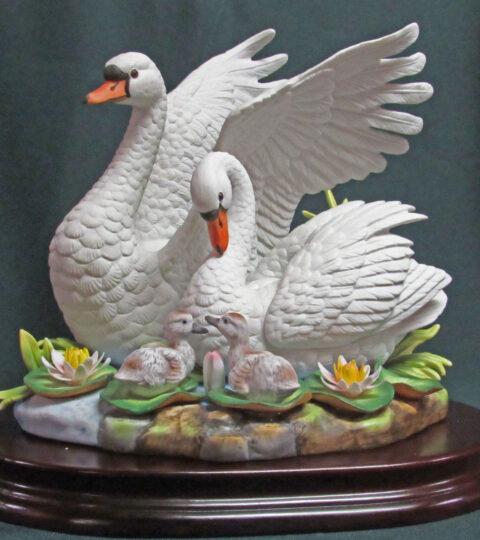 White Mute Swan Family