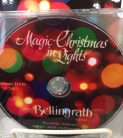 Magic Christmas In Lights DVD